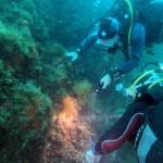plongeurs01