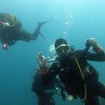 plongeurs13