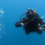 plongeurs15